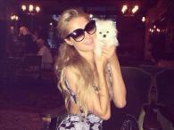 Paris Hilton ma nowego przyjaciela